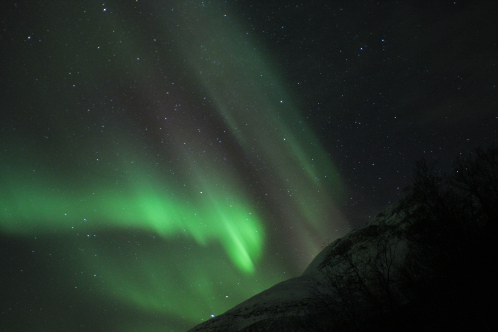 pink and green aurora